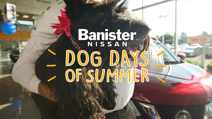 Banister Nissan – Kicks